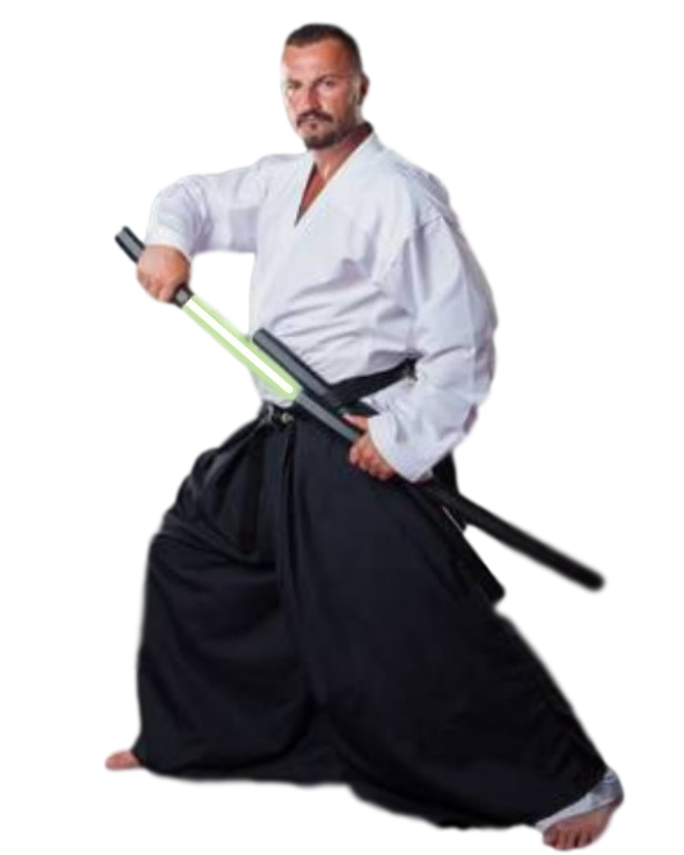 Saberation | Light Sword Martial Arts