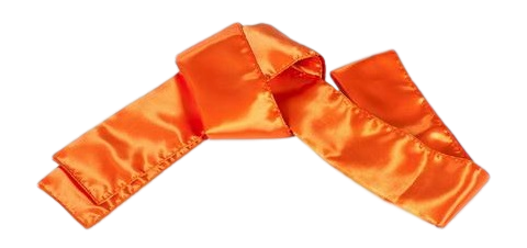 Sash-Orange_large_clipped_rev_1