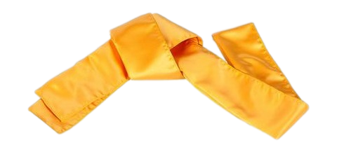 Sash-Yellow_large_clipped_rev_1